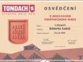 Tondach2